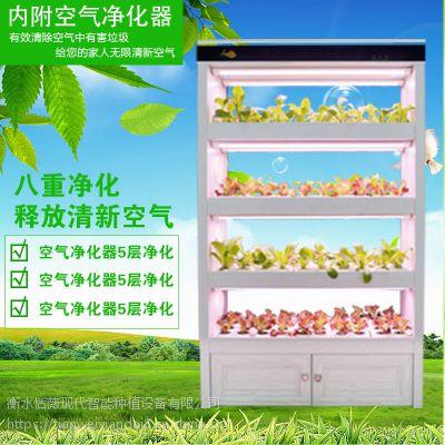 全智能生态菜氧柜智能植物工厂室内制氧家庭型蔬菜种植机植物净化