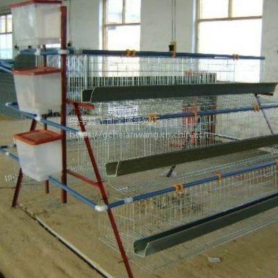 安平鸡笼厂家【鸡笼组装】蛋鸡笼配件咨询飞创丝网厂 产品丰富