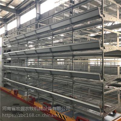 厂家批发自动化设备新式HS-JdL蛋鸡笼 宏盛农牧