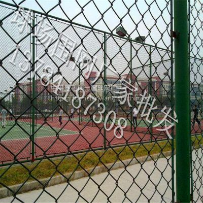 河北霸州学校体育场护栏网厂家批发【3000cm×40000cm】