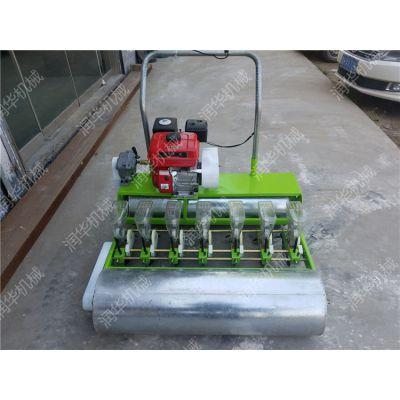 自走式蔬菜播种机 省人力的菜种子精播机 手推式香菜播种机