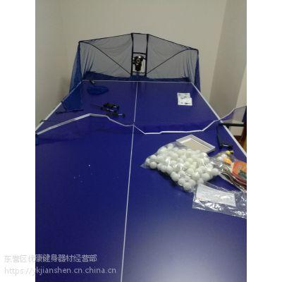双碟乒乓球台 东营乒乓球桌台体用用品专卖店