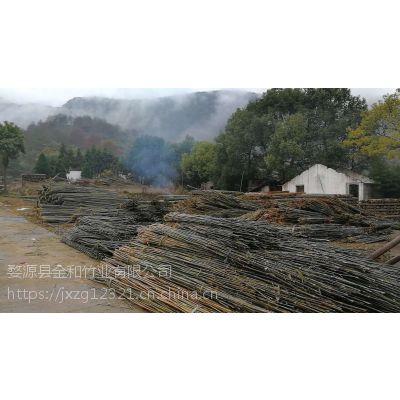 江西竹竿菜架竹2米53米4米大量批发供应