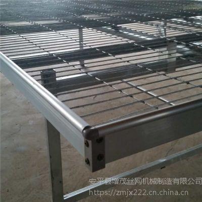 保定温室移动苗床 温室育苗网 温室育苗设备 厂家提供供应