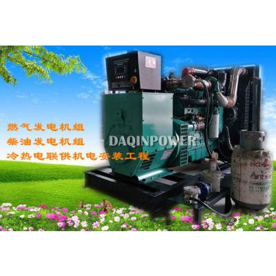 广东沼气发电机组厂家生物质沼气发电机余热利用方案