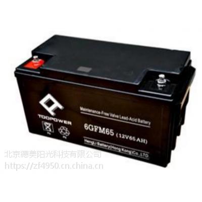 德国赛能天力蓄电池12V65AH直接渠道特价优惠