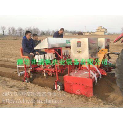 种蔬菜苗移栽机 成帆农业装备