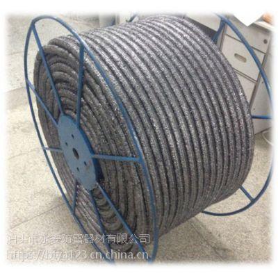 柔性石墨缆接地线泊头永安厂家促销