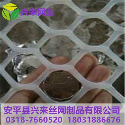 养蚕塑料网 塑料网卷材 小鸡育雏吧网床制作