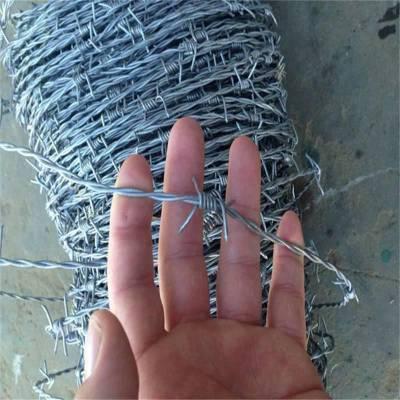刺绳围栏 墙头刺网 镀锌刺绳
