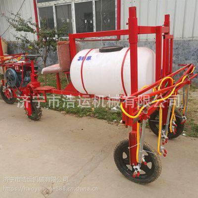 强动力型三轮车打药机 行走式喷雾器 专业高效安全可靠打药机