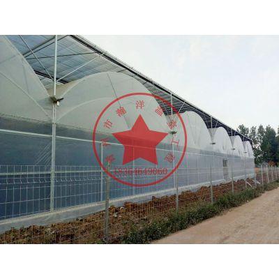 果树蔬菜花卉种植大棚—青州瀚洋高端薄膜拱形连栋温室