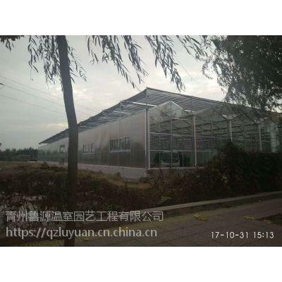 浙江中空阳光板温室大棚8mm外墙体、6米见高、7000平方面积建造方案