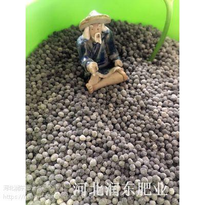 生姜种植专用有机肥 微生物有机肥 菌肥