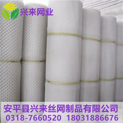 工程塑料网片 粤港塑料网 育雏网养殖小鸡方法
