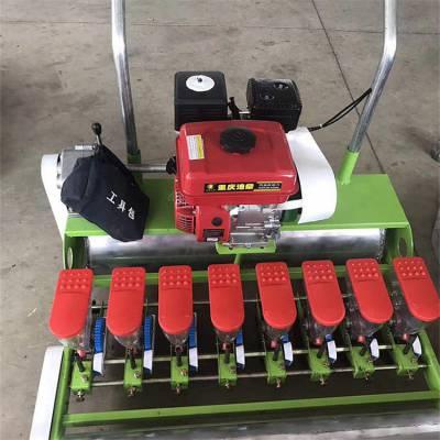 手推式蔬菜播种机 汽油机带动小粒种子播种机