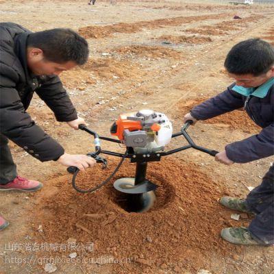 树木立杆打孔机 移栽果树苗地钻挖坑机
