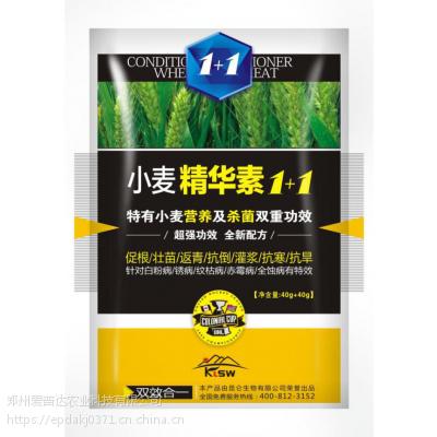 小麦精华素1+1特有营养及杀菌双重功效小麦赤霉病专用药