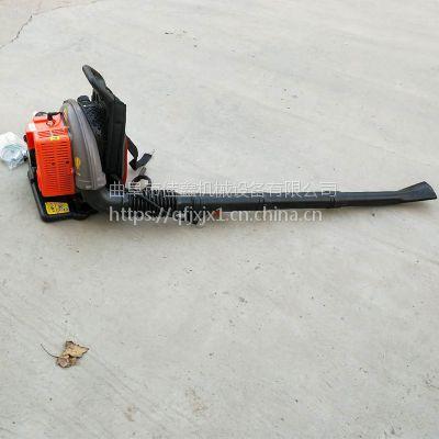 背负式灭火器厂家 佳鑫汽油吹雪机品牌 新款轻便吹树叶机