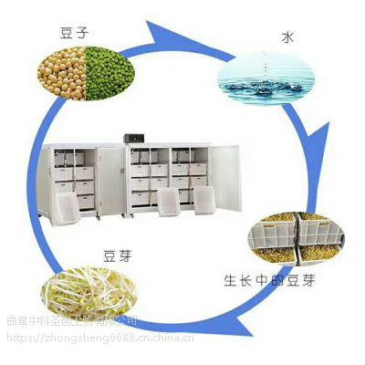 合肥大型豆芽机器 全自动豆芽机生产厂家