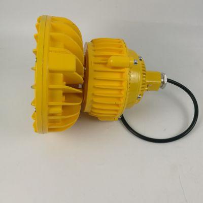 RLEEXL608吊杆式防爆固态照明灯50W/100W