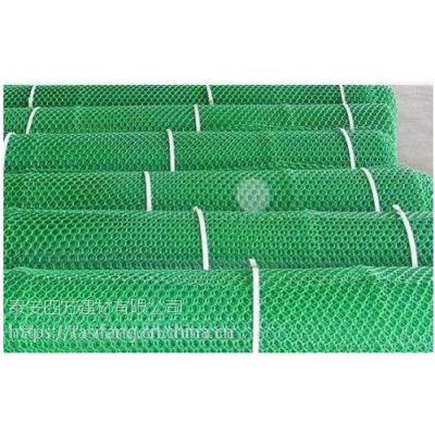 三维植被网护坡网 三维植被网坡面防护材料