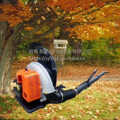 马路落叶杂质清理机 背负式路面吹风机 冬季路面吹雪机型号