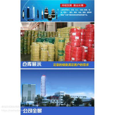 青岛汉河电缆核电站电缆欢迎选购