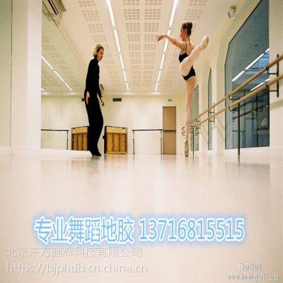舞蹈形体房地胶 舞蹈形体房地胶 专业舞蹈练功房地胶