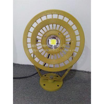 HRD95 120W免维护LED防爆投光灯