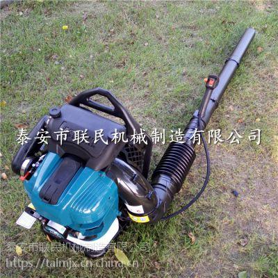 聊城 大功率四冲程汽油吹风机 园林吹叶机 质优价廉