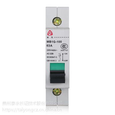 泰永长征长九MB1G系列隔离开关 32A 63A小电流隔离开关 厂家直销