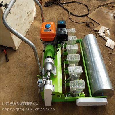 电机带动5行蔬菜种植机 手推式