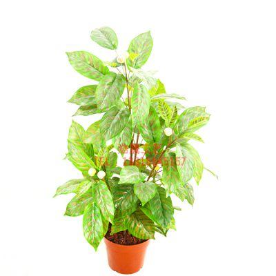 实力工厂直销塑料盆栽 仿真小盆景 绿色植物盆栽摆放电视柜 书桌 前台可定制
