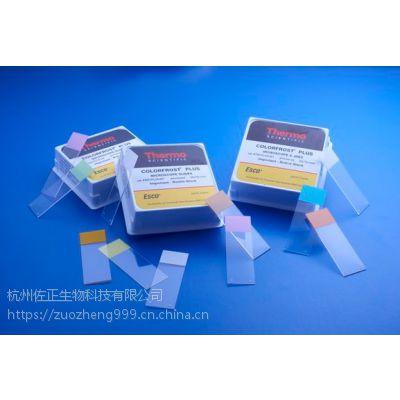 4951plus-Superfrost和ColorFrost显微镜载玻片
