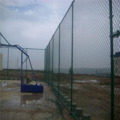 雄丰 厂家直销 蓝球场隔离栅网 勾花护拦网 包塑勾花围栏 质优价廉