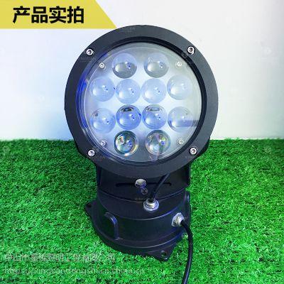 星璨直销LED聚光灯户外防水窄光束投光灯