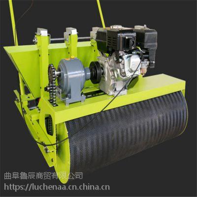 新款鲁辰LC-50大蒜播种机五行全自动汽油播种机
