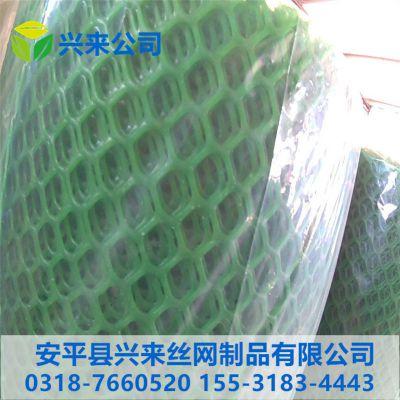 贵州塑料网 兔笼塑料网 哪里有卖育雏鸭脚踏网