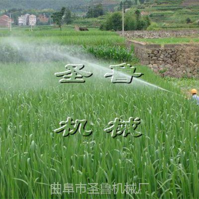 农用打药设备 汽油高压喷雾器 果园打药机 圣鲁机械
