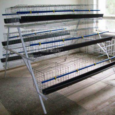 三层鸡笼架子【肉鸡笼】蛋鸡养殖笼厂家批发13784187308李 飞创丝网厂