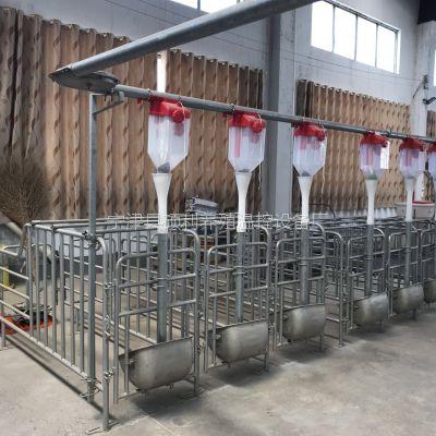 养猪料线-智能化养猪料线节约成本养猪自动上料设备