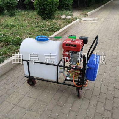 汽油打药机 推车式打药机 园林果树杀虫喷药喷雾机价格 志成热销