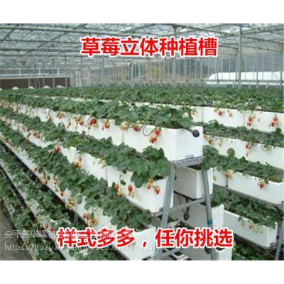 温室花木浇灌与移动苗床网有什么联系