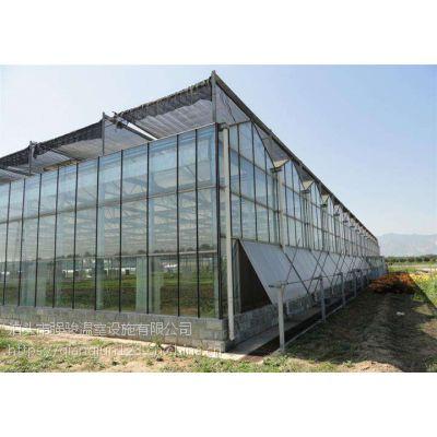 山东温室玻璃暖棚镀锌种植蔬菜面积广