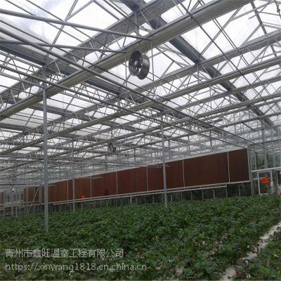 青州鑫旺温室 阳光板温室大棚建设工程价格山西陕西上海浙江