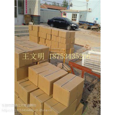 热卖新疆红枣产地厂家