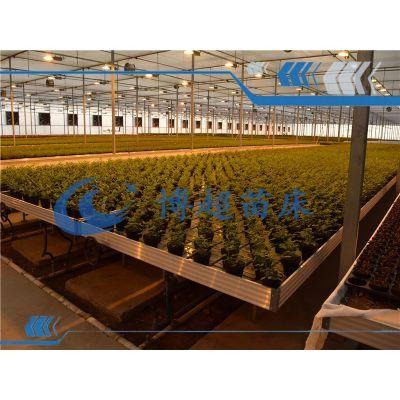 潮汐灌溉式移动苗床设计亮点