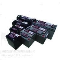供应台湾日月潭电池|免维护铅酸蓄电池|日月潭蓄电池(图)