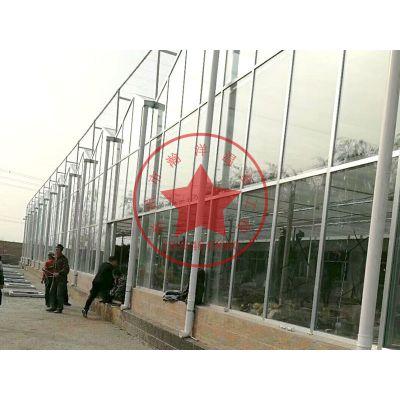 钢结构连栋智能温室大棚建造厂家——青州瀚洋温室